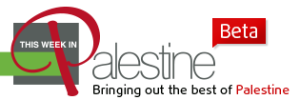 TWIP-homepage-logo-beta